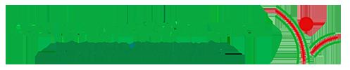 CONSULTING SERVICIOS LUCKY logo